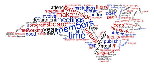 word cloud from open response questions