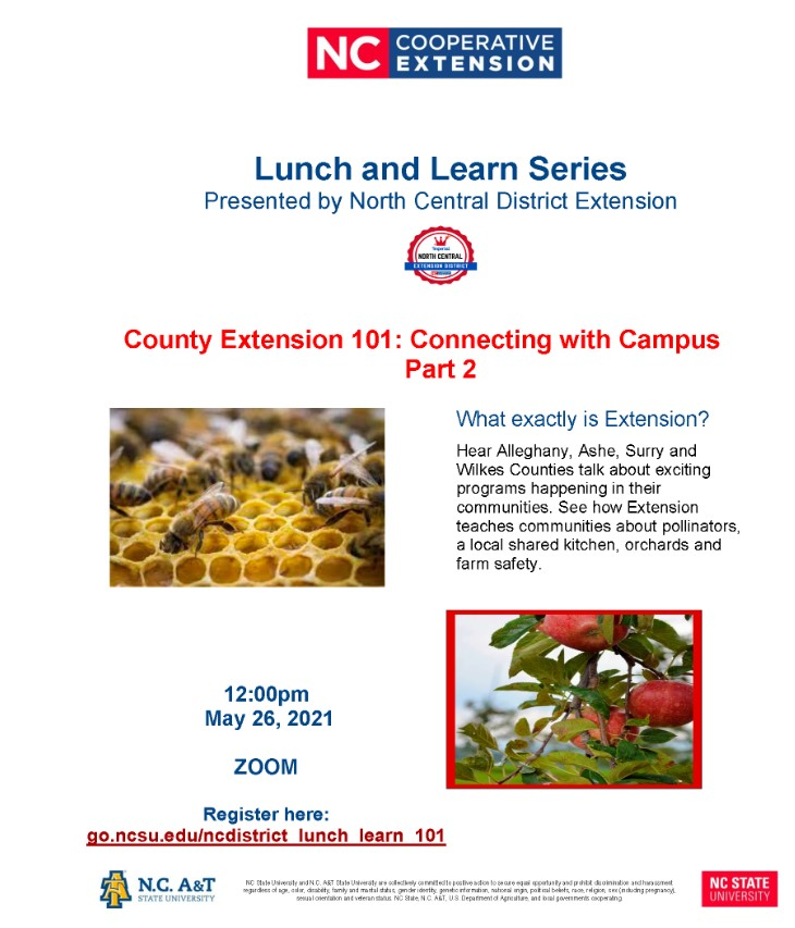 County 101 Lunch and Learn Flyer